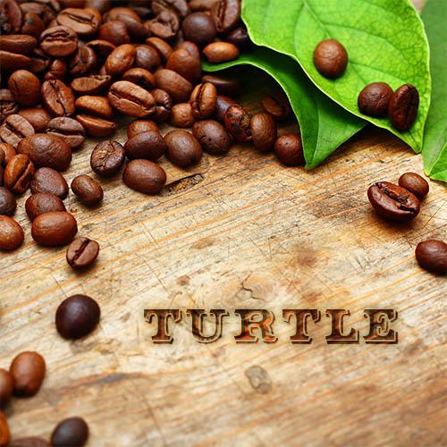 Turtle Coffee - Dark Canyon Coffee